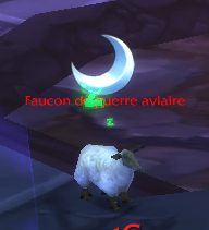 mouton dodo  wow